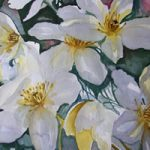 Clematis – Flowers Art Gallery – Painting by Woking Surrey Artist David Harmer