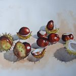 Conkers – Horse Chestnut – Plants & Trees Art Gallery – Watercolour Painting – Art by Woking Surrey Artist David Harmer