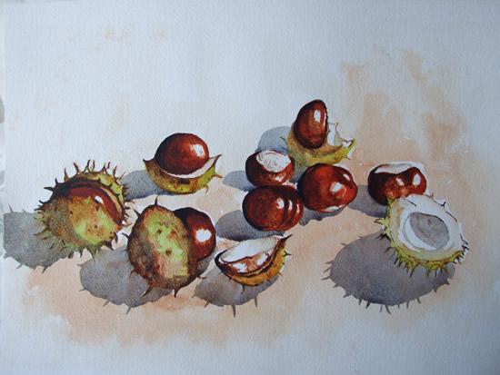 Conkers - Horse Chestnut - Plants & Trees Art Gallery - Watercolour Painting - Art by Woking Surrey Artist David Harmer