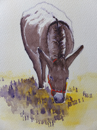 Contented Donkey - Animals and Plants Art Gallery - Painting by Woking Surrey Artist David Harmer