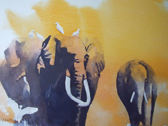 Elephants - The Matriarch - Watercolour Art by Woking Surrey Artist David Harmer