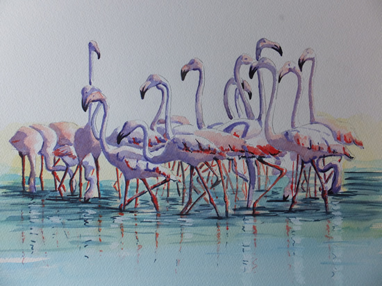 Flamingos in the Camargue - Animals, Birds and Plants Art Gallery - Painting by Woking Surrey Artist David Harmer