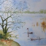 Frensham Little Pond – Surrey Scenes Art Gallery – Painting by Woking Surrey Artist David Harmer