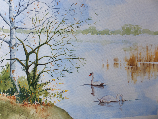 Frensham Little Pond - Surrey Scenes Art Gallery - Painting by Woking Surrey Artist David Harmer