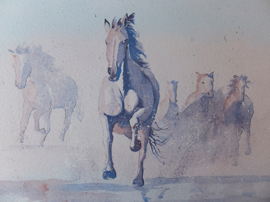 Galloping Horses - Animals, Birds and Plants Art Gallery - Painting by Woking Surrey Artist David Harmer