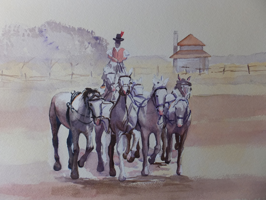 Horsemanship in Hungary - Animals, Birds and Plants Art Gallery - Painting by Woking Surrey Artist David Harmer