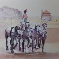 Horsemanship in Hungary – Animals, Birds and Plants Art Gallery – Painting by Woking Surrey Artist David Harmer