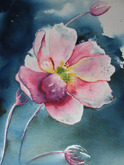 Japanese Anemone - Flowers Art Gallery - Watercolour Painting - Art by Woking Surrey Artist David Harmer