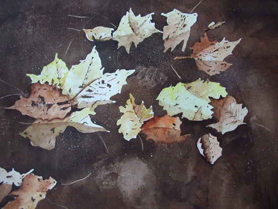 Leaves on Basingstoke Canal Woking - Watercolour Painting - Art by Woking Surrey Artist David Harmer