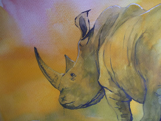 Rhino - Watercolour Art by Woking Surrey Artist David Harmer