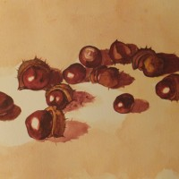 Still Life With Conkers – Animals and Plants Art Gallery – Painting by Woking Surrey Artist David Harmer
