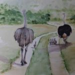 The Ostrich Family – Animals, Birds and Plants Art Gallery – Painting by Woking Surrey Artist David Harmer