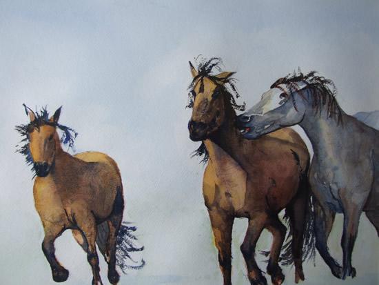Wild Horses - Watercolour Art by Woking Surrey Artist David Harmer