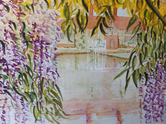 Wisteria in Wisley - Surrey Scenes Art Gallery - Painting by Woking Surrey Artist David Harmer