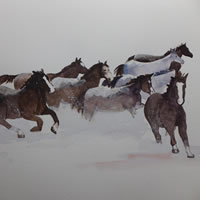 Horses in the Snow – Animals Art Gallery