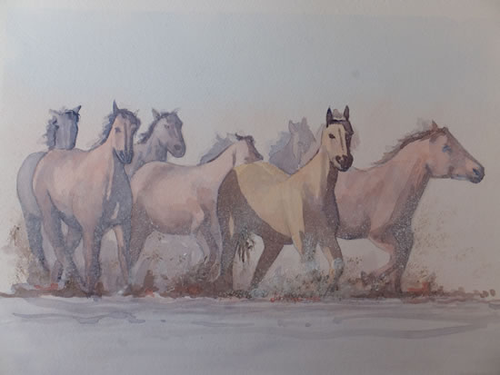 Horses in the Wetlands - Animals Art Gallery