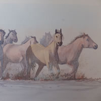 Horses in the Wetlands – Animals Art Gallery